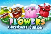 Verdien free spins voor Flowers Christmas Edition