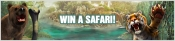 Win een safari in Amsterdams Casino